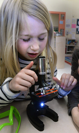 BRYAN EATON/Staff Photo. Ellebe Foster, 7, uses a microscope to check out different items as fish scales, bird feathers and the like Thursday afternoon. She was in the Kid's Club afterschool program in the Science Club at Newbury Elementary School.
