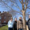 BRYAN EATON/Staff Photo. Friends of Newburyport Trees members near a row of trees they planted a decade ago at the Bartlet Mall, from left, Kim Kudym, Jean Berger, Jane Niebling and Crispin Miller.