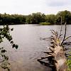 Amesbury: Bailey's Pond in Amesbury. Bryan Eaton/Staff Photo