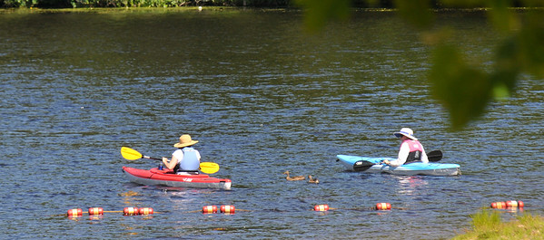 amesbury: Two kayakers are paced by two ducks as they head out on Lake Gardner Sunday morning. Jim Vaiknoras/staff photo