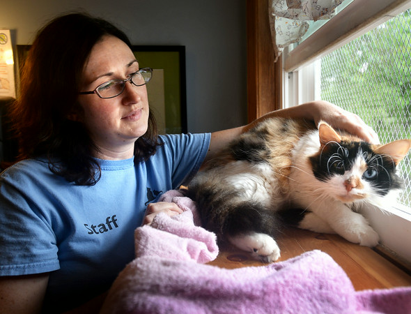 """BRYAN EATON/ Staff Photo. Liz Pease of the Merrimack Valley Feline Rescue Society with Gobstopper at the Salisbury facility. They are holding their """"Purricane"""" on Saturday."""