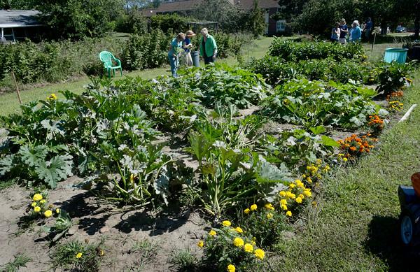 BRYAN EATON/Staff Photo. Several volunteers help maintain the Pettengill House Community Garden.
