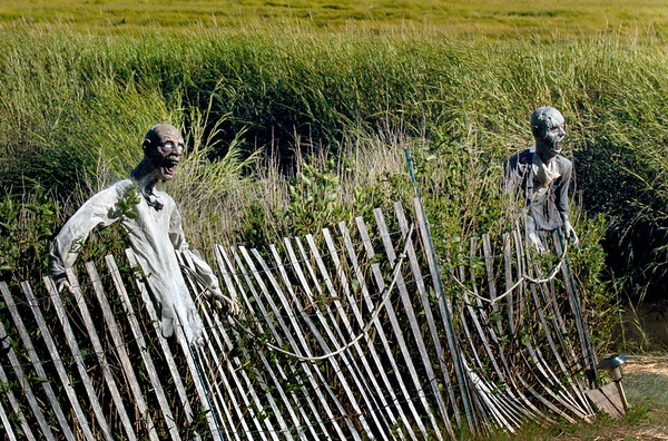 BRYAN EATON/Staff photo. It appears some fans of Halloween have an early start on the holiday, though this display of ghouls on the marsh of Hay Street in Newbury has been in place for a couple months.