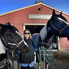 BRYAN EATON/Staff photo. Several area horse farms have been awarded Mass. Farm Bureau Federation's 2017 Horse Farm of Distintion award. Eileen Cashman with half-sisters Luna, left, who was born at the Lalobarun Ranch in Newbury and Willow who was a two time top 10 world champion in the halter category.