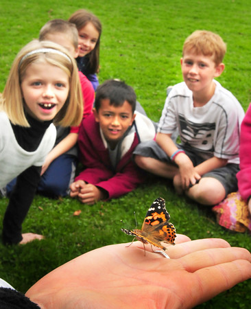 Amesbury: Schools often raise butterflies to teach about life cycles of the animal world and I'm often there for the big release, but the photos aren't usually that great as the insects just flutter in a blur out of their cages. On this release, however, the butterflies weren't cooperating and Amesbury's Cashman School teacher Amy Mitchell coaxed one of several American Painted Lady's onto the palm of her hand before it flew away to the amazement of students.  Bryan Eaton/Staff Photo
