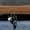 Salisbury: Jay Oczkowski of Seabrook catches some air as he kite surfs near the Salisbury Reservation boat dock Saturday. Jim Vaiknoras/staff photo