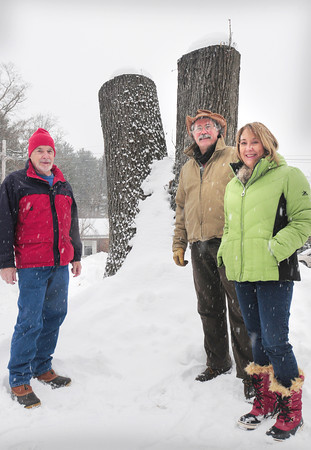 Georgetown: Chainsaw sculptor Justin Gordon, center, with RIchard Mullen, left, and Georgetown Housing Authority director Diane Drinan are behind plans to sculpt this tree into a veterans memorial shaped like and eagle at the housing authority's Trestle Way complex. Bryan Eaton/Staff Photo