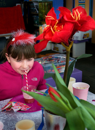 Amesbury: Reece Hartman, 8, sips punch under some flowers with a couple close friends at her Valentine party in Suzanne Morin's class at Amesbury Elementary on Wednesday. She earned a bunch of tickets in some academic excercises to qualify for the Valentine party drawing which she won. Bryan Eaton/Staff Photo