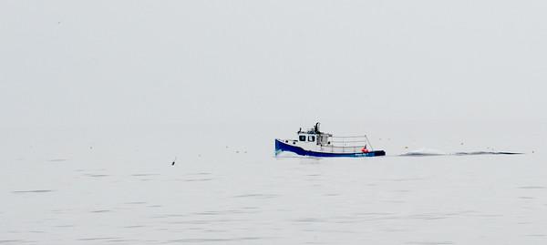 JIM VAIKNORAS/Staff photo A boat makes it way along the shore of Salisbury Beach Early Saturday morning.
