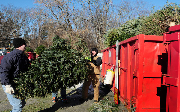Newbury: Wednesday was the last day Newbury Fire Protection Co. #2 was collecting Christmas trees to be used in this weekend's bonfire. Loading some were firemen Ken Wright, Jonathan Kelley, president of the company, and Nate Walker. Bryan Eaton/Staff Photo