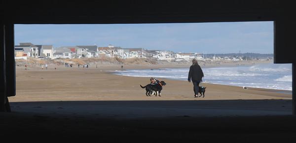Salisbury: A woman walks her dogs on a unseasonbly warm January Sunday on Salisbury Beach. Jim Vaiknoras/staff photo