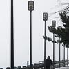 JIM VAIKNORAS/Staff photo A woman walks her dog along the boardwalk on foggy Sunday afternoon in Newburyport.