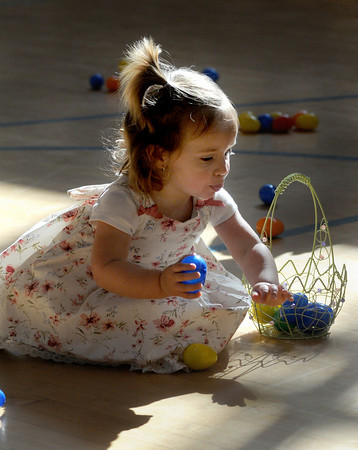 Salisbury: Sophia Stanley, 2, scoops up some eggs at the annual Egg Hunt sponsered by the Salisbury parks and Recreation dept at the Elementary School Saturday. Jim Vaiknoras/Staff photo