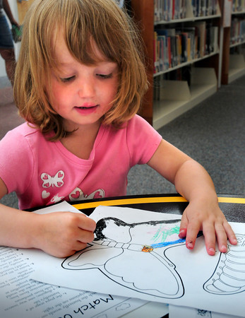 Newbury: Gabrielle Funchion, 4, of Groveland colors in the outline of a butterfly at the Newbury Public Library on Wednesday afternoon. She was at the Massachusetts Audubon's Joppa Flats Education Center's Butterfly Carnival that had art projects, games, and exploration into the world of caterpillars, butterflies, and gardens to attract them. Bryan Eaton/Staff Photo