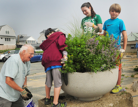 Newbury: Volunteers put all kinds of flora in huge planters at Plum Island Center on Wednesday morning. Bryan Eaton/Staff Photo