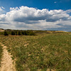 Site of Camp Seahaven on Plum Island in 2012.  Jim Vaiknoras/Staff photo