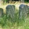 Newbury: Unmowed grass in First Parish cemetery<br /> in Newbury. Jim Vaiknoras/staff photo