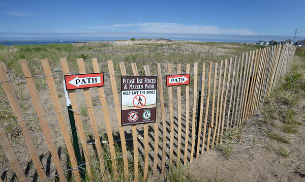 BRYAN EATON/Staff photo. New fencing in the area of Reservation Terrace on Plum Island guide walkers to designated pathways and keeps them from walking over much of the dunes.