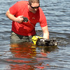 JIM VAIKNORAS/staff photo Owen Corcoran of Amesbury and Ernie take a swim to cool off in Lake Gardner in Amesbury Sunday.