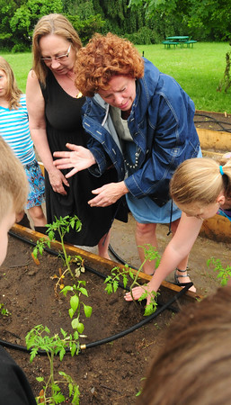 West Newbury: Page School teachers Krystelle Griskiewicz, left, and Kate Wood check out the progress of the tomato plants with their students. Bryan Eaton/Staff Photo