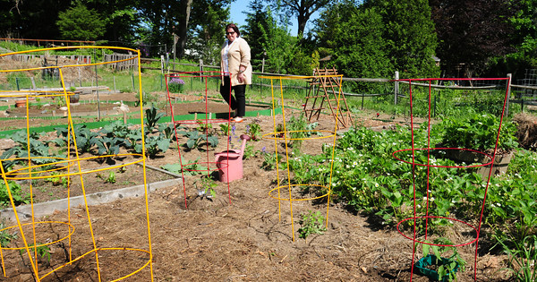 BRYAN EATON/ Staff Photo. Patty McDermott, director of the New Eden organic garden.
