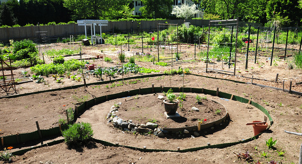 BRYAN EATON/ Staff Photo. There are 40 plots at the New Eden Organic Garden at the First Parish Church of Newbury.