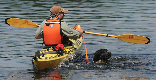 JIM VAIKNORAS/Staff photo Jeremy Kezer teaches his dog Reef how to swim during Amesbury Days Lake Gardner Weekend Saturday. Reef is an Irish Water Spaniel.