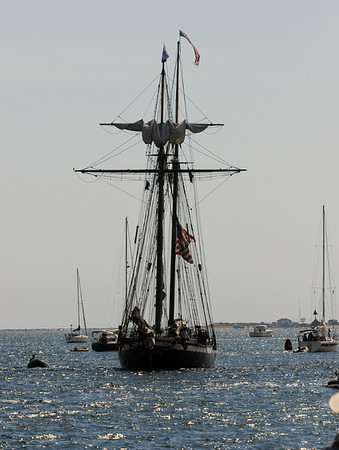 BRYAN EATON/Staff Photo. The Lynx approaches Newburyport's waterfront yesterday morning.