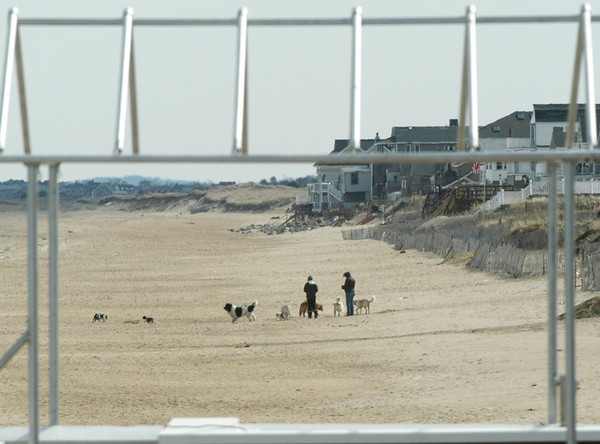 Salisbury: Dogwalkers were in abundance at Salisbury Beach yesterday, here framed by the frame of a tent on the deck of Surfside 5. Bryan Eaton/Staff Photo