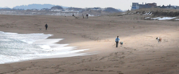 Newburyport: People and their dogs took to the beaches at Plum Island on Monday afternoon as the temperature warmed to the seasonal average. Dogs are only allowed on the beach until May 15 when they're prohibited until October 15. Bryan Eaton/Staff Photo