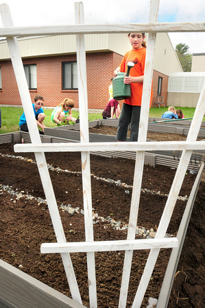 Seabrook: Fifth-graders in Katelyn Tomasi and Amie Heatherton's classes work on their garden at Seabrook Middle School. This is their second year growing flowers and vegetables which they will use to make salsa and lasagna when they return to school in the fall. Bryan Eaton/Staff Photo