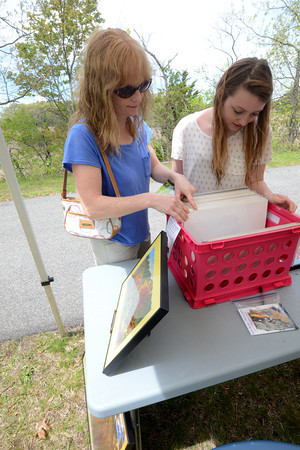 JIM VAIKNORAS/Staff photo Cindy Janvrin and her daughter Jess look at photographs by Ross Seidel at the 2nd annual Salisbury Art Stroll on the Rail Trail Saturday .