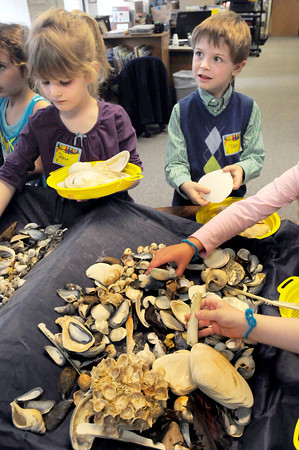 BRYAN EATON/ Staff Photo. Kindergartners Patrice Fox, 6, left, and Tobin Hayes, 5, pick out different types of shells at the Brown School in Newburyport on Tuesday. Naturalists from Joppa Flats Education Center were on hand teaching the children about the local marine ecology.