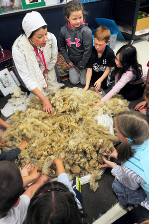 BRYAN EATON/ Staff Photo. Arleen Shea lets third-graders at Cashman Elementary School in Amesbury touch wool that was taken from sheep at Spencer-Peirce-Little Farm in Newbury where she is a presenter. The students have been learning about Colonial America in their unit on local history.