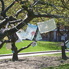 JIM VAIKNORAS/Staff photo Poetry, written by students at the River Valley Charter School, hang from trees in Market Landing Park in Newburyport.