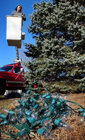 Salisbury: Ray Cote of the Salisbury DPW hangs lights on the Christmas tree in Salisbury Square. The Salisbury Chamber of Commerce tree lighting will be this Sunday at 5:00pm. Bryan Eaton/Staff Photo