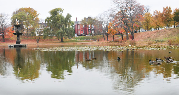 Newburyport: There's progress on the Frog Pond restoration. Underwater aerators were installed last week and the Bartlet Mall Commission finally got approved to post signs warning people not to feed the ducks. Bryan Eaton/Staff Photo