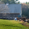 BRYAN EATON/Staff photo. The Mehaffey Farm on Newbury Road in Rowley.