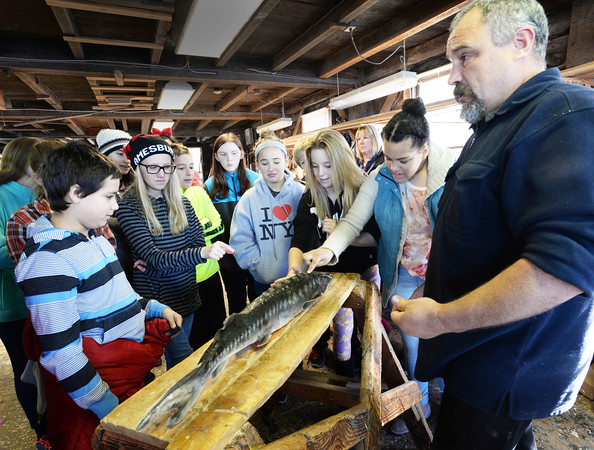 BRYAN EATON/Staff photo. Micah Kieffer, a research biologist with the United States Geological Survey, shows a frozen sturgeon to Amesbury Middle School students at Lowell's Boat Shop teaching them about the ancient fish which inhabits the Merrimack River. The students, which visit the boat shop on a regular basis, are also helping out building two boats.