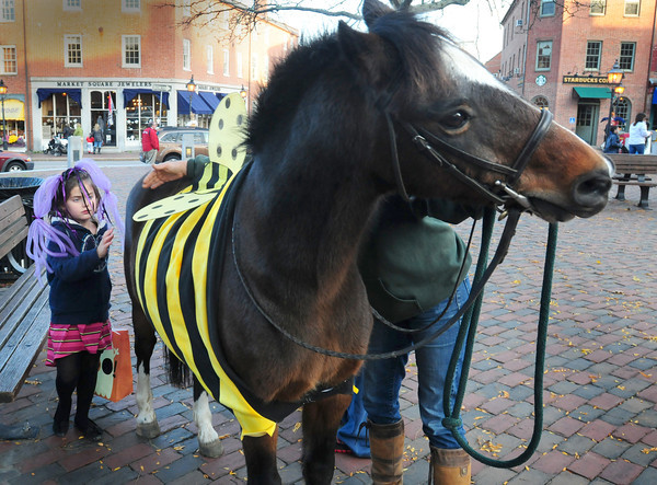 Newburyport: Bridgette Oteyza, 5, of Newburyport pets Boo, dressed as a bumble bee during Wednesday's Downtown Trick or Treat. Boo was present to raise money for the New England Equine Rescue. Bryan Eaton/Staff Photo