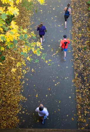 Newburyport: Runners in the NewburyportGreenStrideHalfMarathon make their way under the fall foliage on the Rail Trail in Newburyport Sunday afternoon. JIm Vaiknoras/staff photo