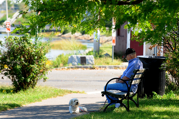 JIM VAIKNORAS/Staff photo<br /> John Plourde and Susie sit in the shade under a tree in Cashman Park along the Merrimack River Thursday afternoon.