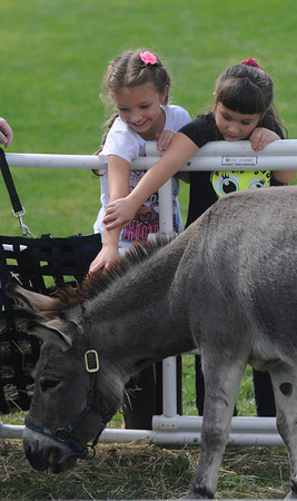 Jim Vaiknoras/staff photo.Rachel Otto,7, and her sister katie,6, pet Nugget a mini donkey at Groveland Days Saturday at the Groveland Recreation Fields. Nugget was at the event with the New England Equine Rescues North in West Newbury.
