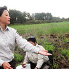 Rowley: The sandpiper is a blur as Nancy Pau releases it. Bryan Eaton/Staff Photo