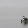 BRYAN EATON/Staff photo. A fishing boat in Seabrook Harbor stands out against the fog on Monday afternoon. Clearer skies are forecast for the rest of the week.
