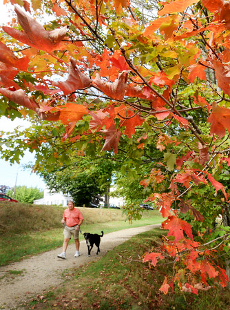 BRYAN EATON/Staff photo. Some trees are starting to change color, though some earlier than usual as the lack of rain can cause stress. Joe Wurzel of Newburyport, with Dixie, took a stroll on the Bartlet Mall in Newburyport yesterday under some changing maple leaves with fall beginning today.