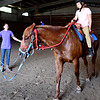 BRYAN EATON/Staff photo. Lily Robinson helps Madelyn Madore, 8, how to control and guide the horse.