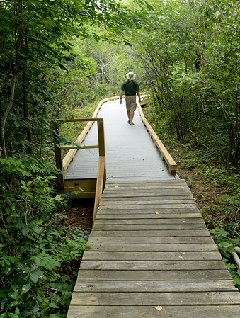 BRYAN EATON/Staff Photo. Hellcat Swamp marsh loop at the Parker River National Wildlife Refuge on Plum Island reopened on Tuesday. John Brothwell of Dover, N.H. walks from the old walkway onto the new which is made of heavy plastic and has low railings for wheelchair use later on.
