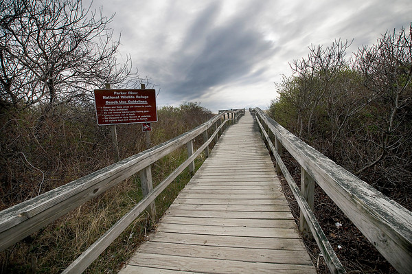JIM VAIKNORAS/STaff photo. One of the boadwalk trails at the Parker River Wldlife Refuge.