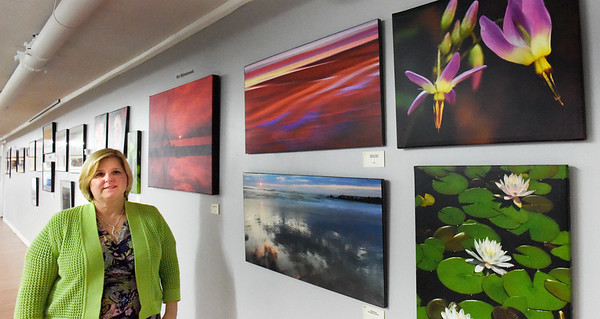 BRYAN EATON/Staff photo. Liz Jutras of Appliance Warehouse in Seabrook has created a gallery of area artists upstairs where the furniture showroom is. Here are photos from Ron Wybranowski of North Andover.